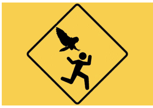 Danger Man being chased by Owl