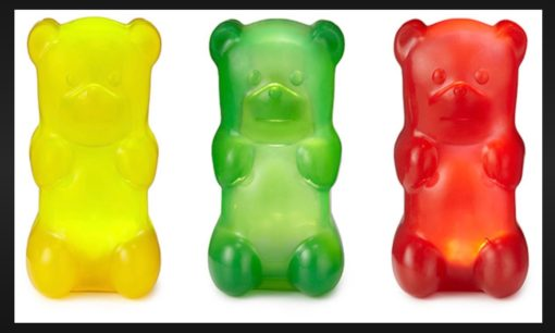 What the bears that were in the plastic container looked like